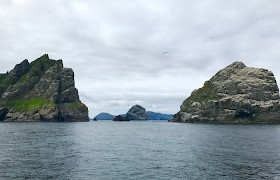 Bororay, St Kilda by Flick Turnbull